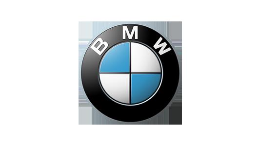 BMW-logo-2000-300